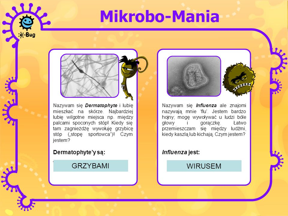 Mikrobo-Mania GRZYBAMI WIRUSEM Dermatophyte'y są: ___________