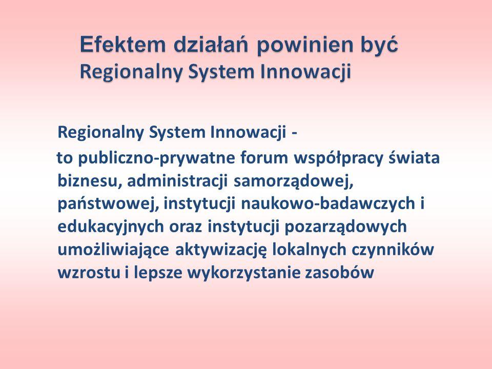 Efektem działań powinien być Regionalny System Innowacji