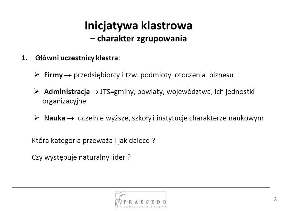 Inicjatywa klastrowa – charakter zgrupowania