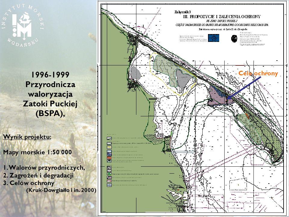 1996-1999 Przyrodnicza waloryzacja Zatoki Puckiej (BSPA),