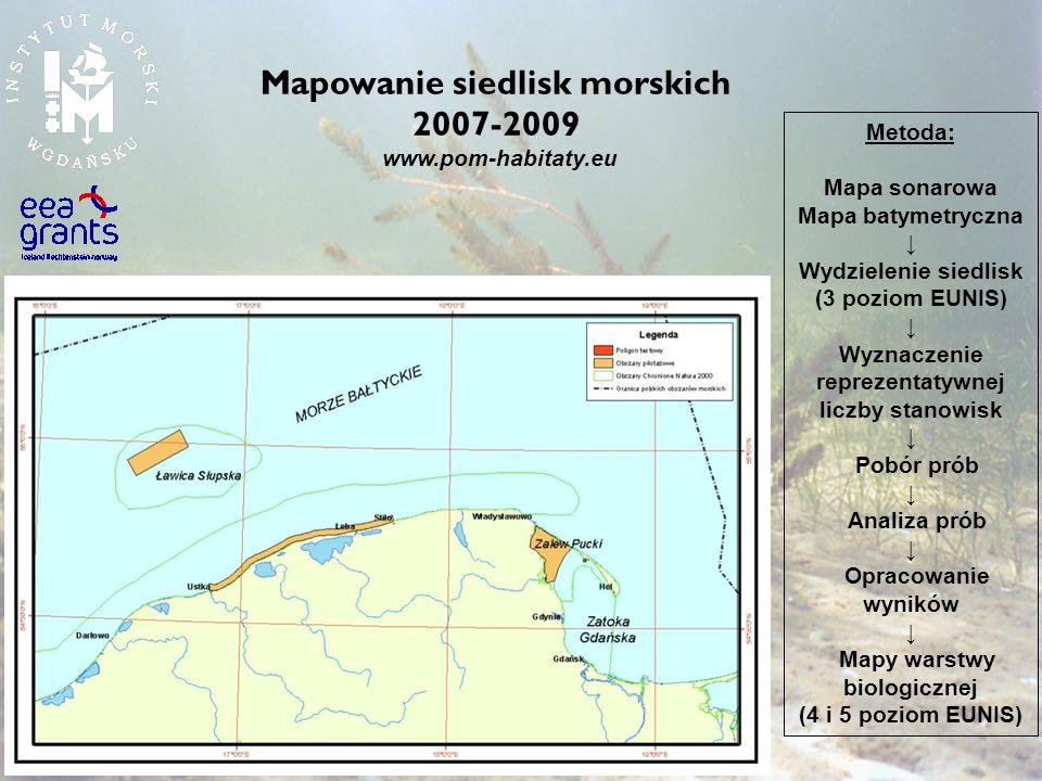 Mapowanie siedlisk morskich 2007-2009 www.pom-habitaty.eu