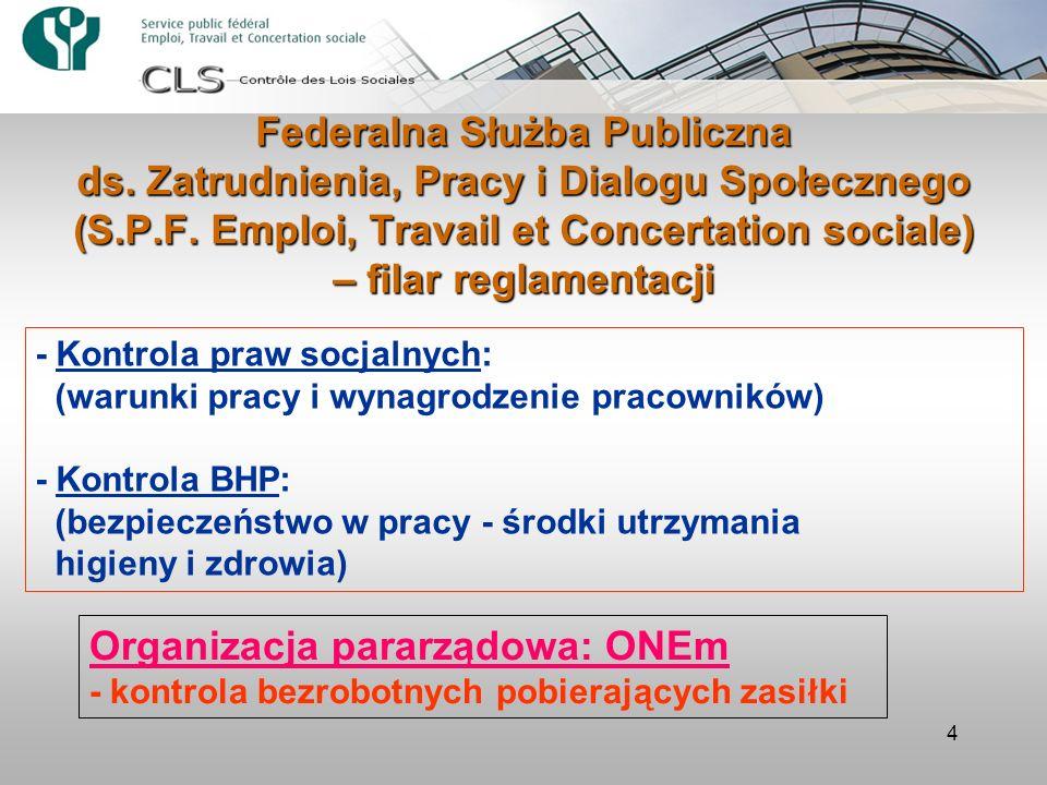 Organizacja pararządowa: ONEm