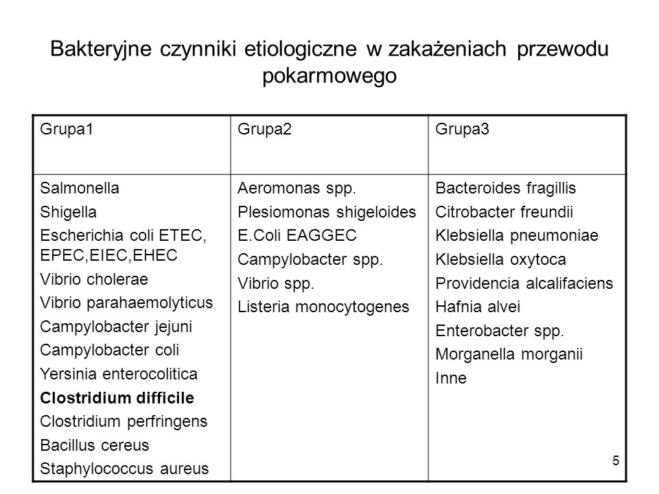 Bakteryjne czynniki etiologiczne w zakażeniach przewodu pokarmowego