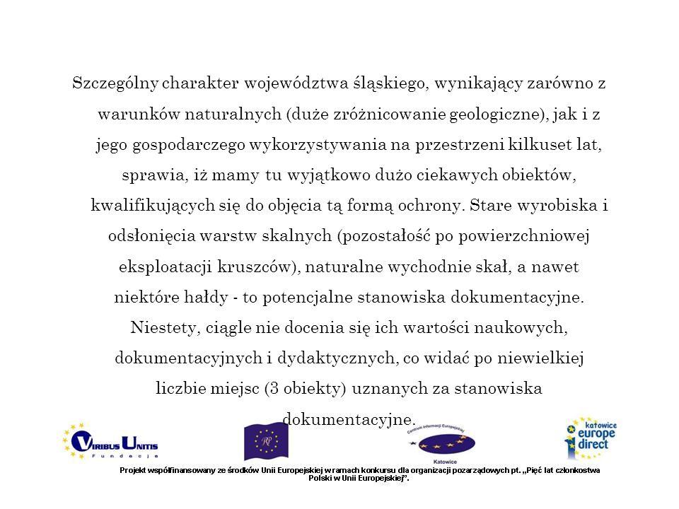 Szczególny charakter województwa śląskiego, wynikający zarówno z warunków naturalnych (duże zróżnicowanie geologiczne), jak i z jego gospodarczego wykorzystywania na przestrzeni kilkuset lat, sprawia, iż mamy tu wyjątkowo dużo ciekawych obiektów, kwalifikujących się do objęcia tą formą ochrony.