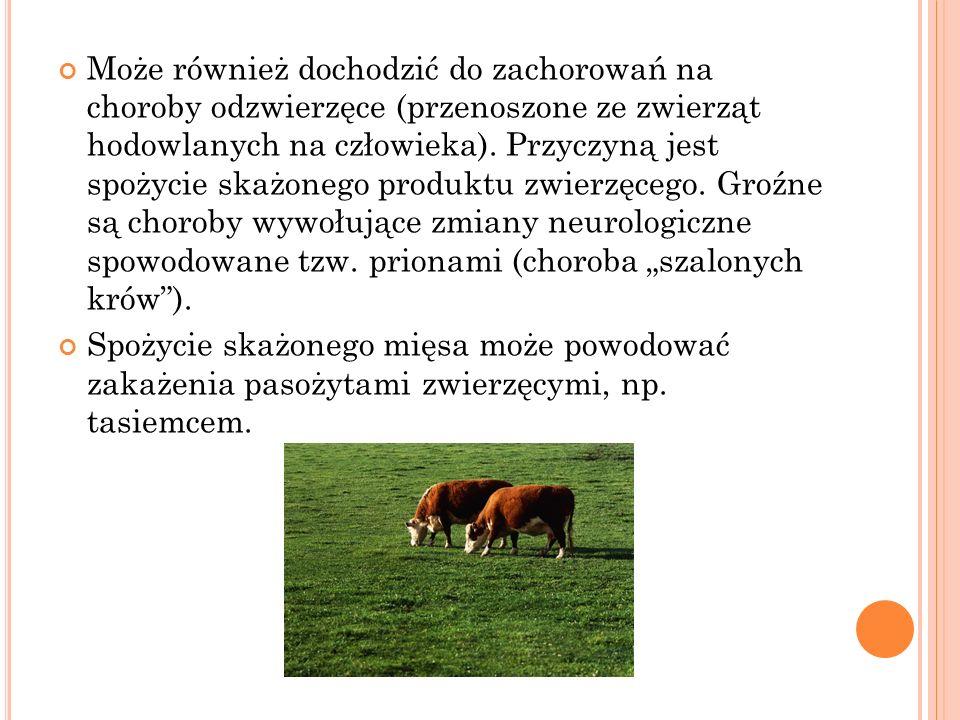 """Może również dochodzić do zachorowań na choroby odzwierzęce (przenoszone ze zwierząt hodowlanych na człowieka). Przyczyną jest spożycie skażonego produktu zwierzęcego. Groźne są choroby wywołujące zmiany neurologiczne spowodowane tzw. prionami (choroba """"szalonych krów )."""