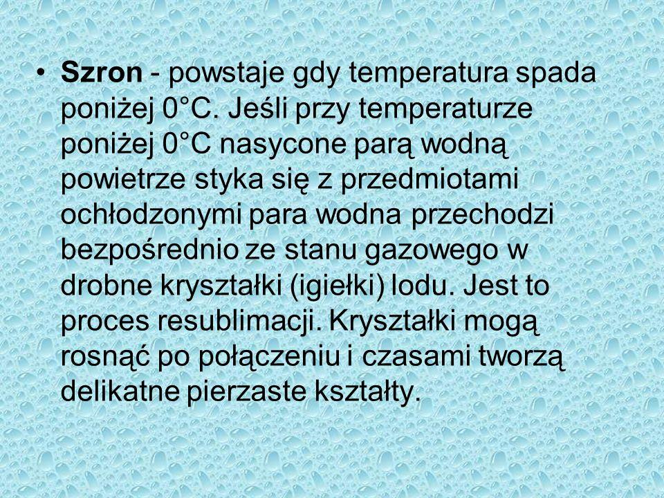 Szron - powstaje gdy temperatura spada poniżej 0°C