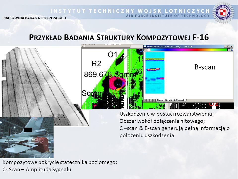 Przykład Badania Struktury Kompozytowej F-16