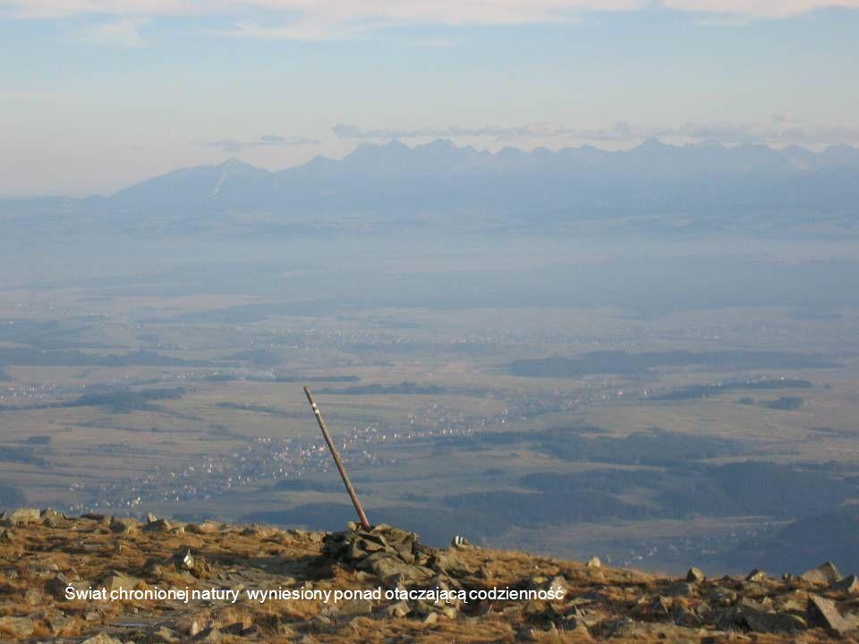 Świat chronionej natury wyniesiony ponad otaczającą codzienność