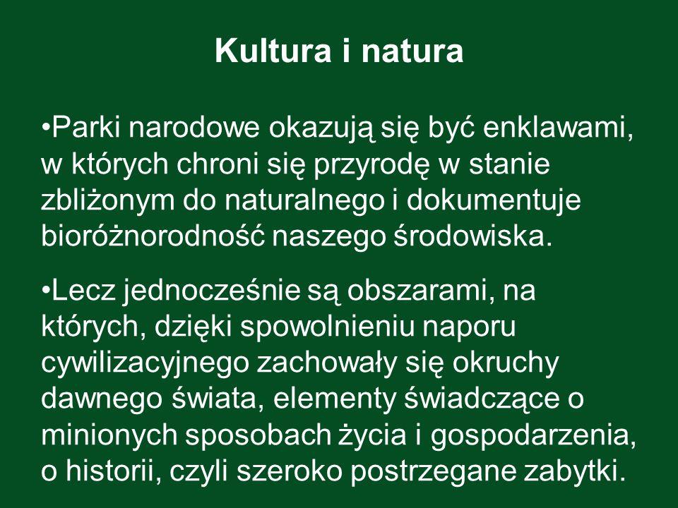 Kultura i natura