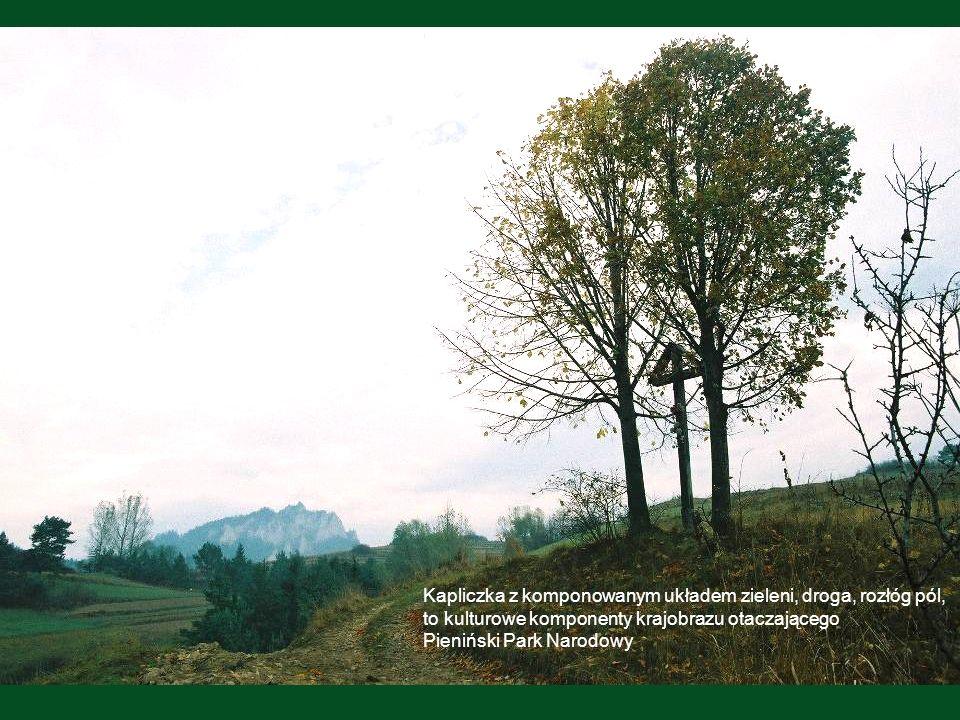 Kapliczka z komponowanym układem zieleni, droga, rozłóg pól,