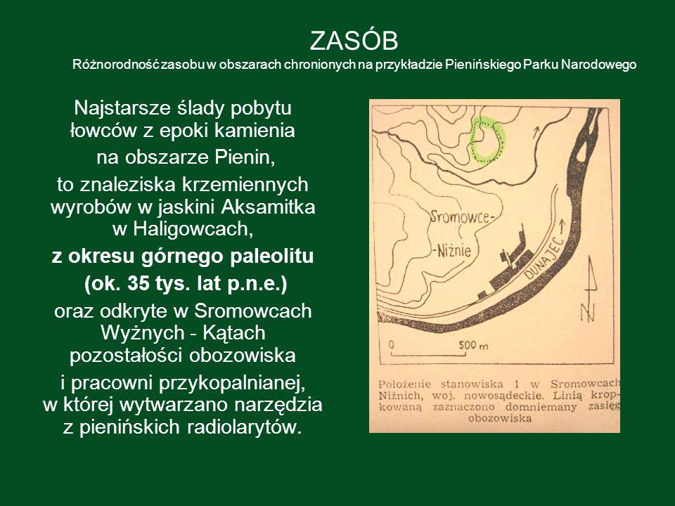 z okresu górnego paleolitu
