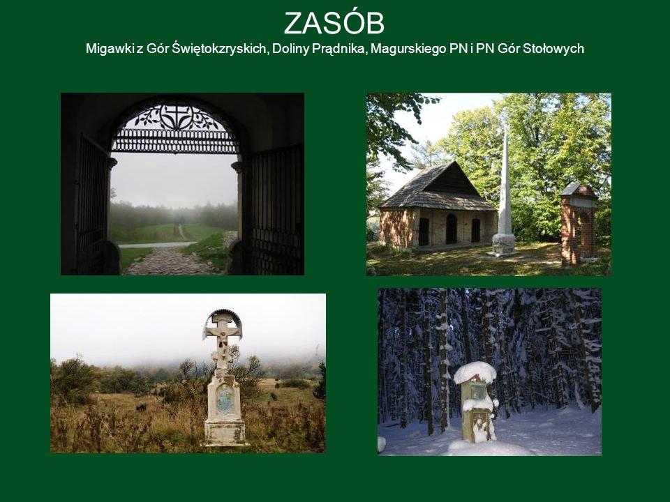 ZASÓB Migawki z Gór Świętokzryskich, Doliny Prądnika, Magurskiego PN i PN Gór Stołowych