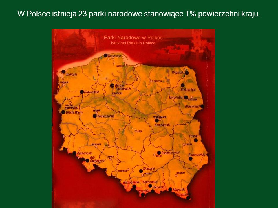 W Polsce istnieją 23 parki narodowe stanowiące 1% powierzchni kraju.