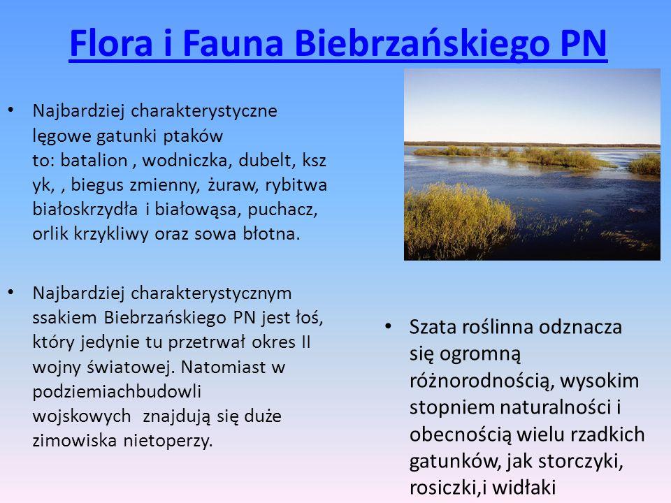 Flora i Fauna Biebrzańskiego PN