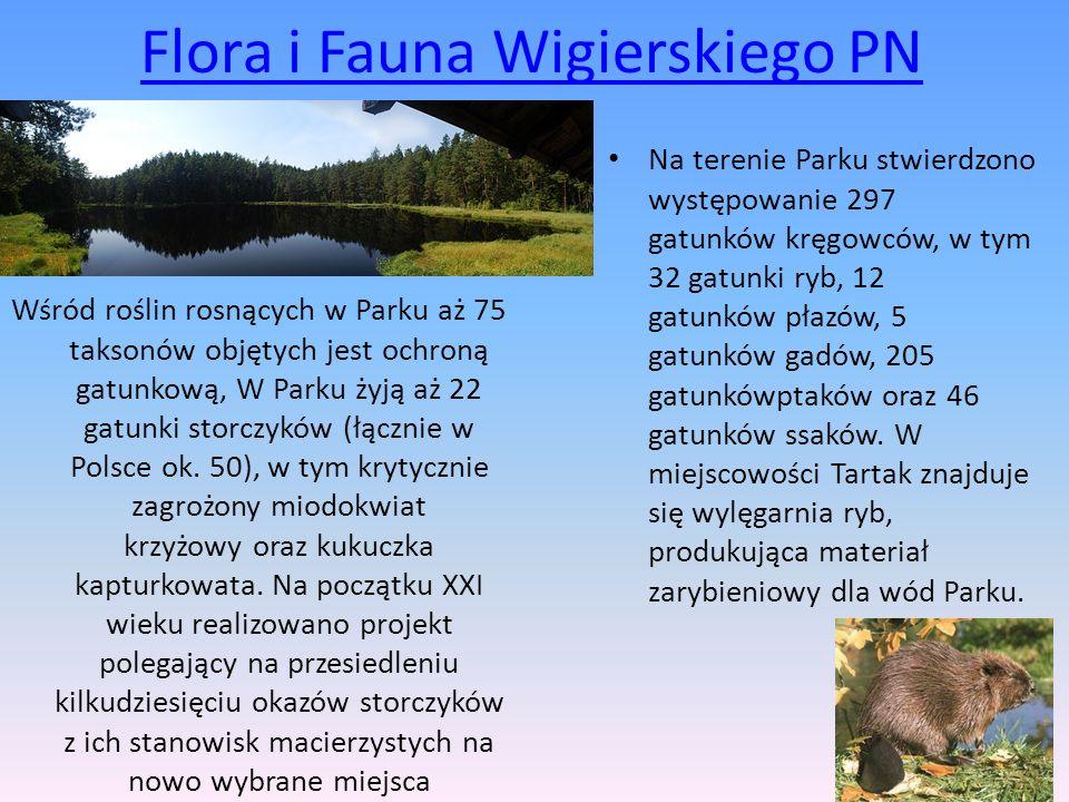 Flora i Fauna Wigierskiego PN
