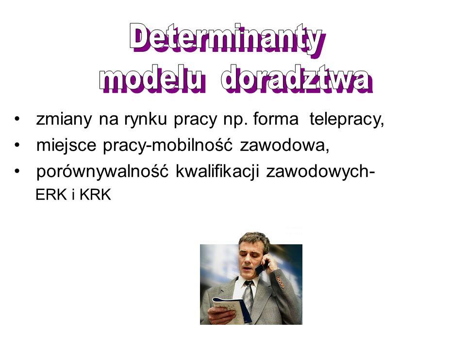 Determinanty modelu doradztwa