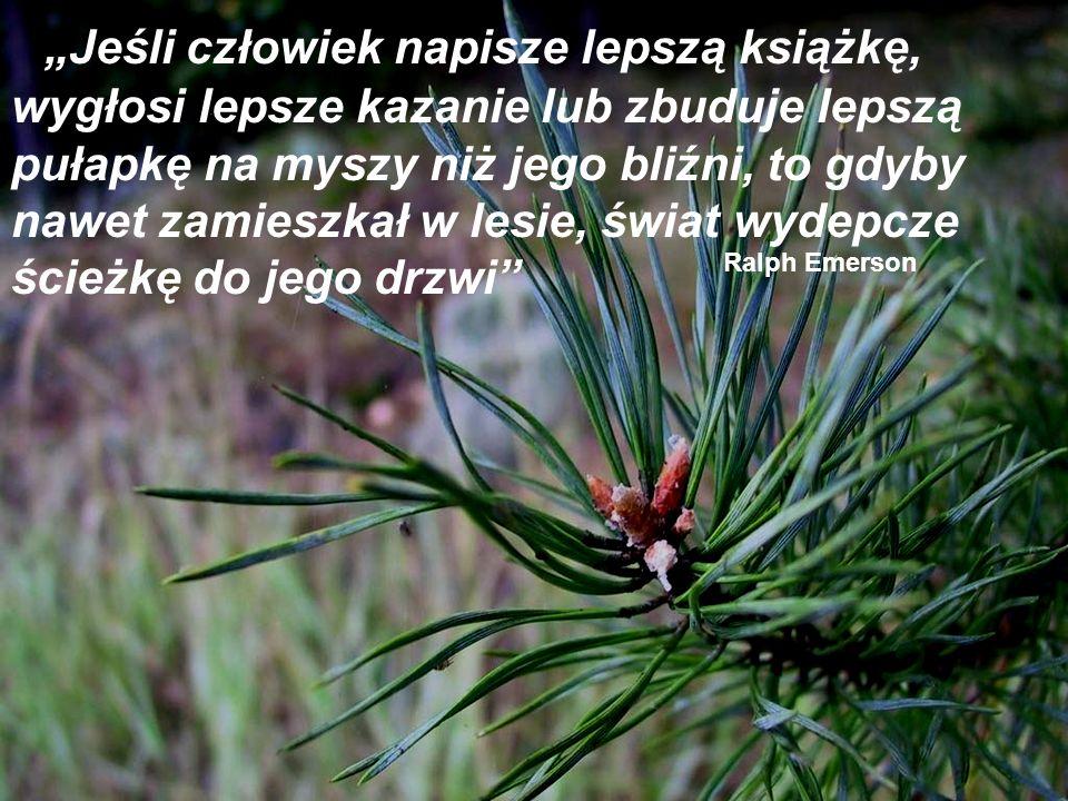 """""""Jeśli człowiek napisze lepszą książkę, wygłosi lepsze kazanie lub zbuduje lepszą pułapkę na myszy niż jego bliźni, to gdyby nawet zamieszkał w lesie, świat wydepcze ścieżkę do jego drzwi"""
