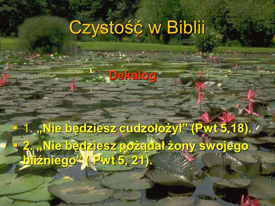 """Czystość w Biblii Dekalog 1. """"Nie będziesz cudzołożył (Pwt 5,18)."""
