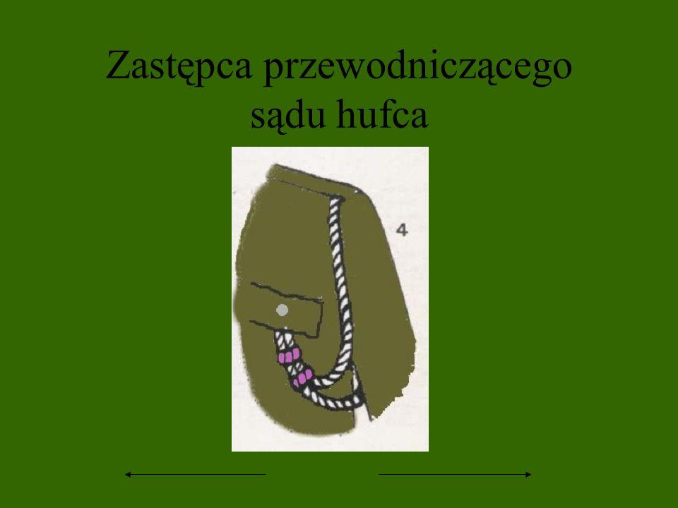 Zastępca przewodniczącego sądu hufca