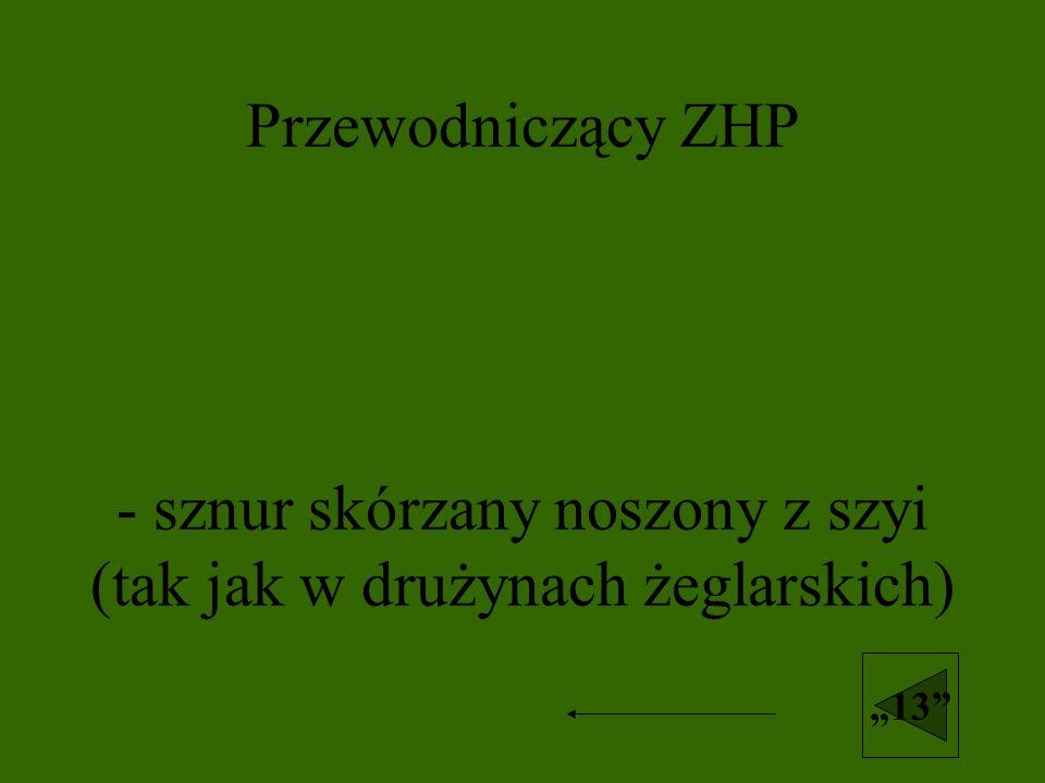 Przewodniczący ZHP - sznur skórzany noszony z szyi (tak jak w drużynach żeglarskich)