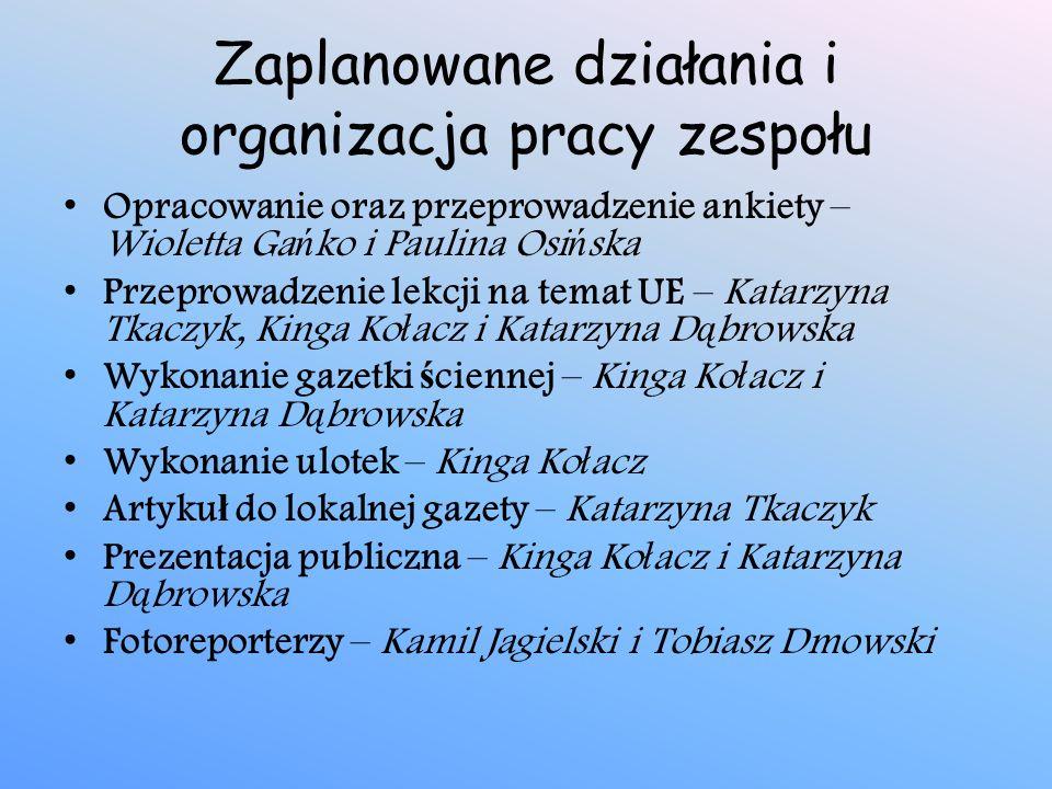 Zaplanowane działania i organizacja pracy zespołu