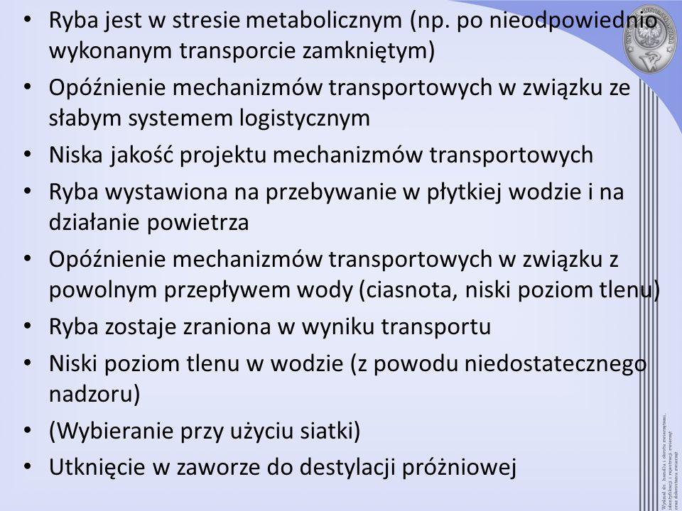 Ryba jest w stresie metabolicznym (np