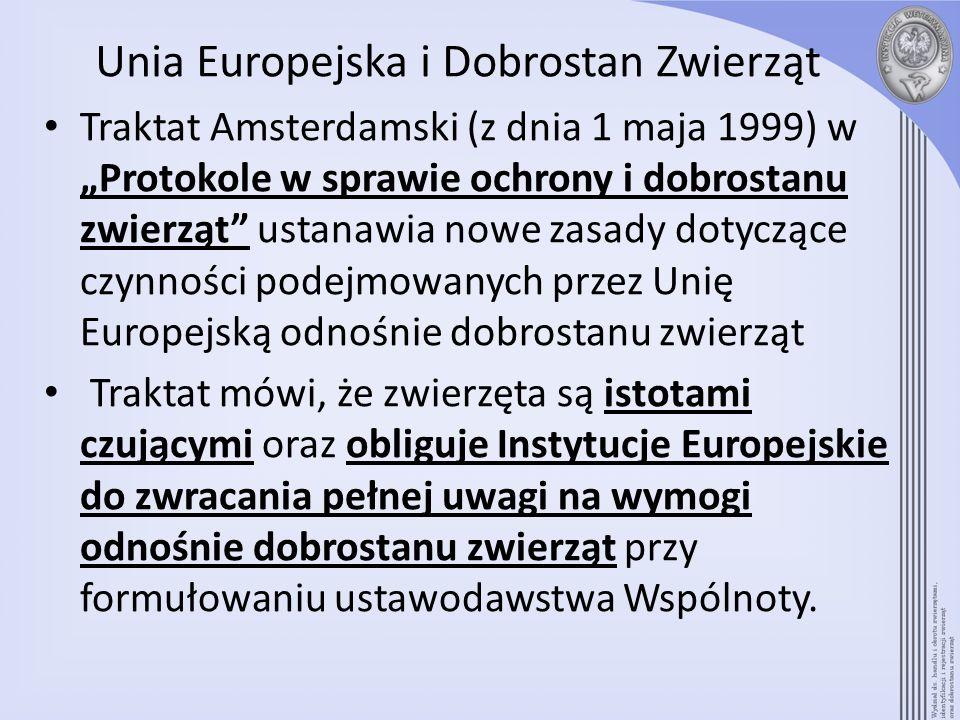 Unia Europejska i Dobrostan Zwierząt
