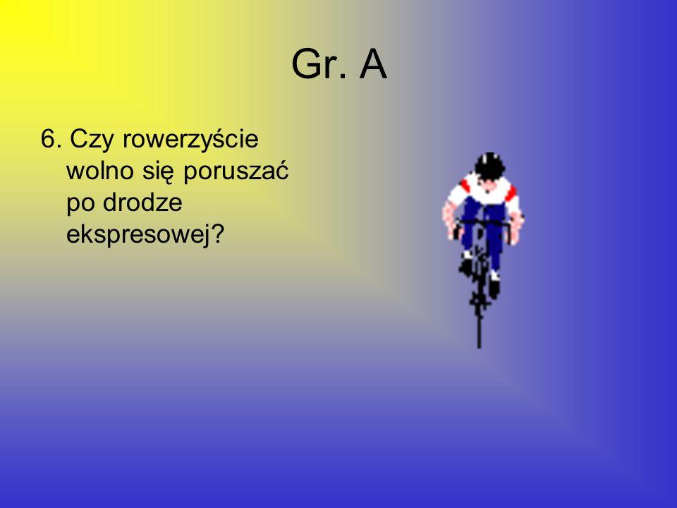 Gr. A 6. Czy rowerzyście wolno się poruszać po drodze ekspresowej