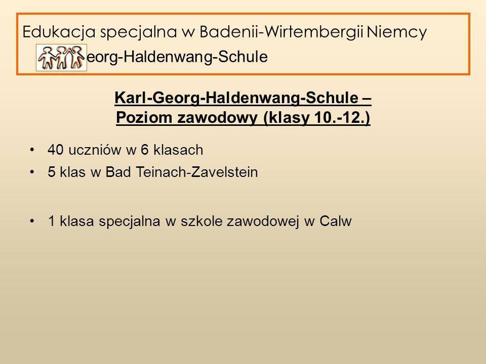 Karl-Georg-Haldenwang-Schule – Poziom zawodowy (klasy 10.-12.)