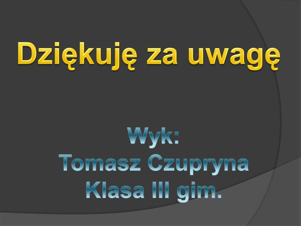 Dziękuję za uwagę Wyk: Tomasz Czupryna Klasa III gim.
