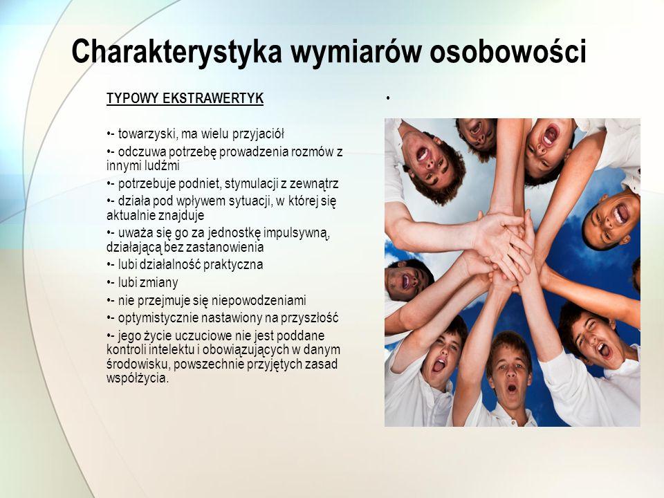 Charakterystyka wymiarów osobowości