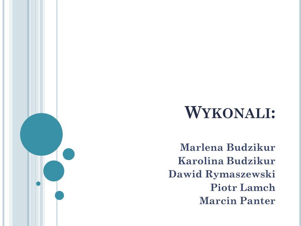 Wykonali: Marlena Budzikur Karolina Budzikur Dawid Rymaszewski
