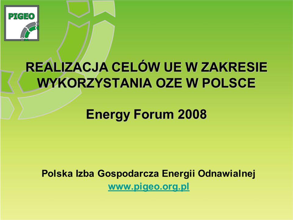 Polska Izba Gospodarcza Energii Odnawialnej www.pigeo.org.pl