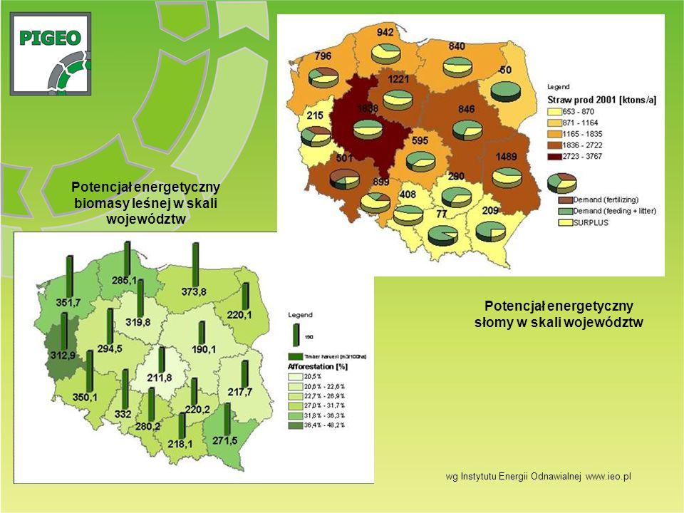 Potencjał energetyczny biomasy leśnej w skali województw