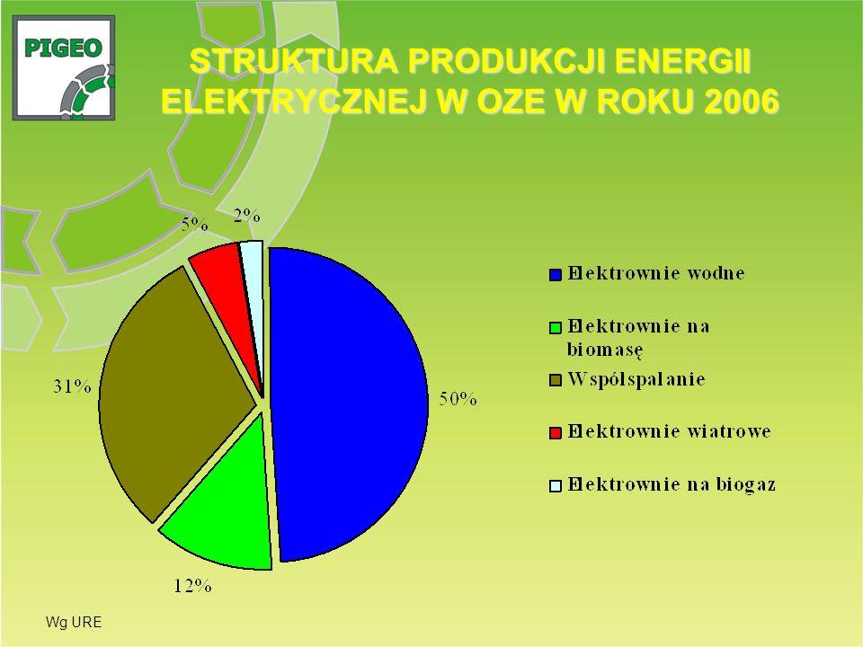 STRUKTURA PRODUKCJI ENERGII ELEKTRYCZNEJ W OZE W ROKU 2006