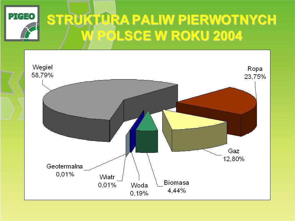 STRUKTURA PALIW PIERWOTNYCH W POLSCE W ROKU 2004