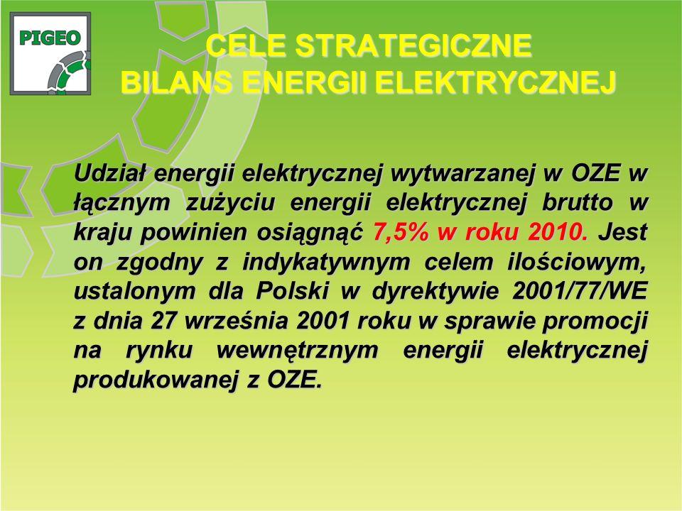 CELE STRATEGICZNE BILANS ENERGII ELEKTRYCZNEJ