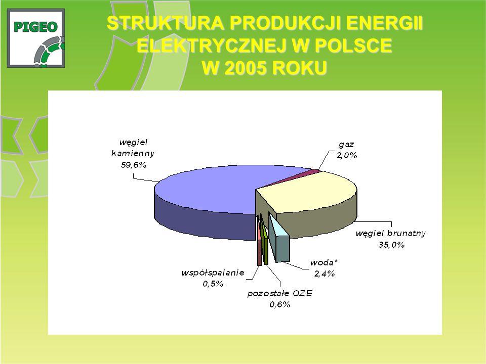 STRUKTURA PRODUKCJI ENERGII ELEKTRYCZNEJ W POLSCE W 2005 ROKU
