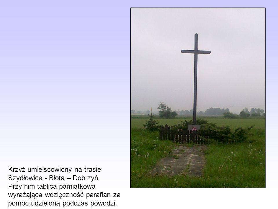 Krzyż umiejscowiony na trasie Szydłowice - Błota – Dobrzyń