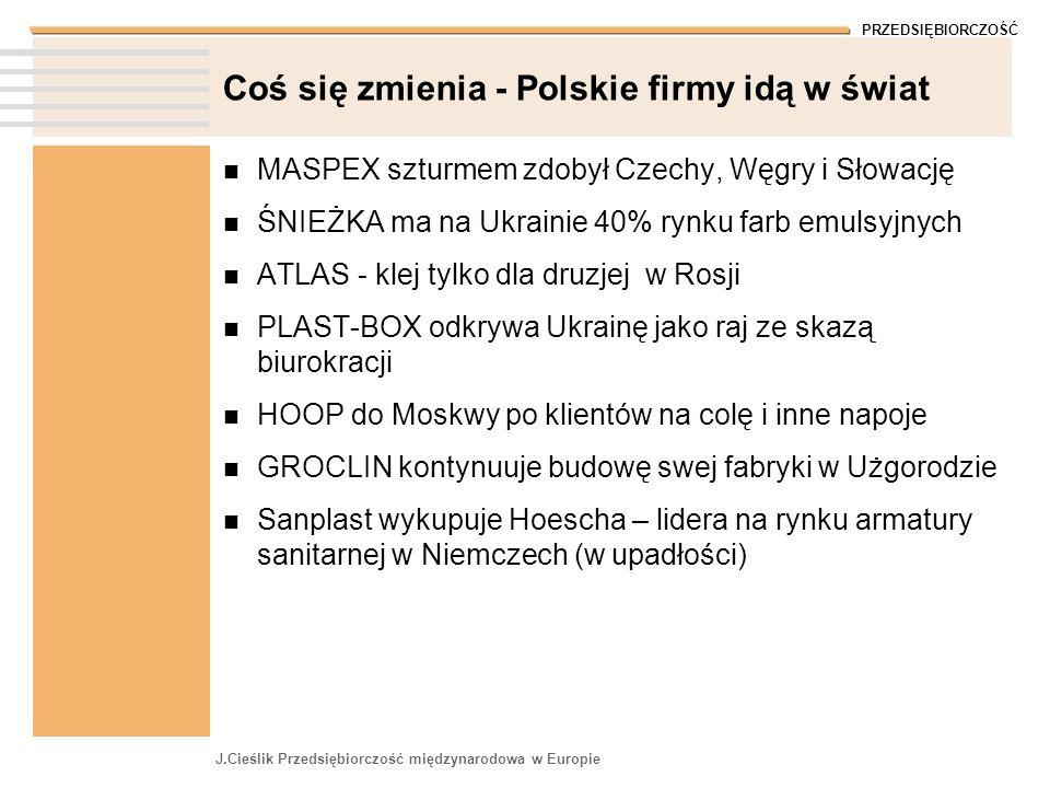 Coś się zmienia - Polskie firmy idą w świat
