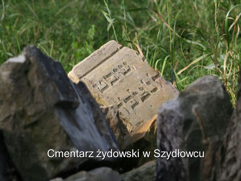 Cmentarz żydowski w Szydłowcu