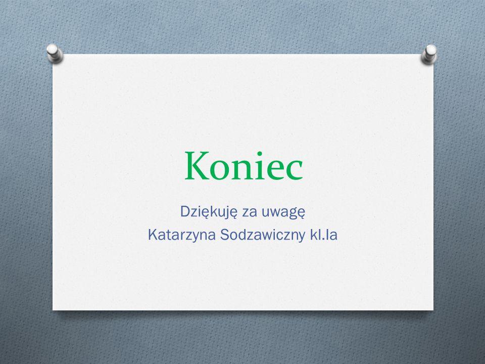 Dziękuję za uwagę Katarzyna Sodzawiczny kl.Ia
