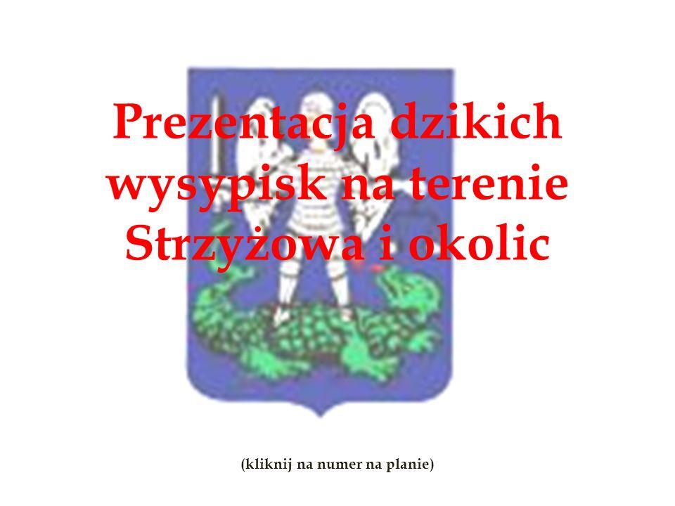 Prezentacja dzikich wysypisk na terenie Strzyżowa i okolic (kliknij na numer na planie)
