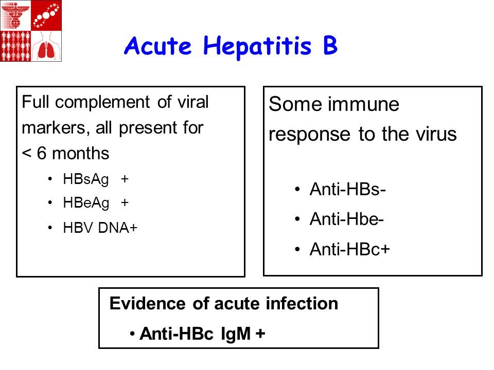 Acute Hepatitis B Some immune response to the virus