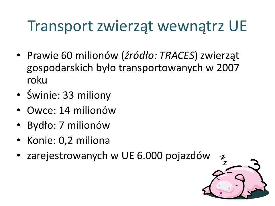 Transport zwierząt wewnątrz UE