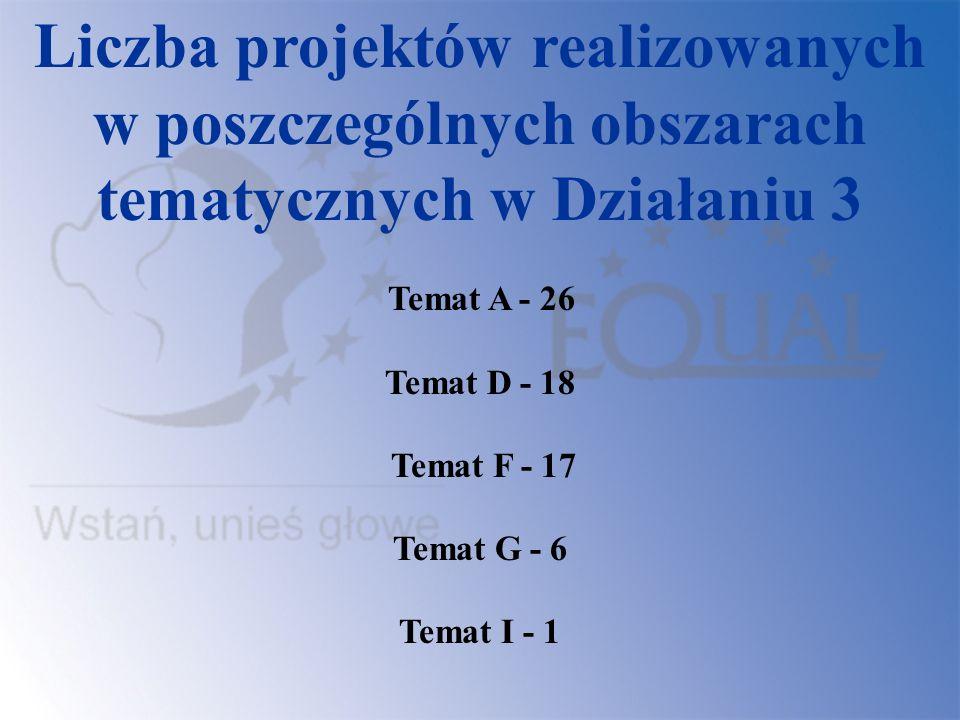Liczba projektów realizowanych w poszczególnych obszarach tematycznych w Działaniu 3
