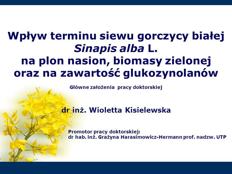 Wpływ terminu siewu gorczycy białej Sinapis alba L.
