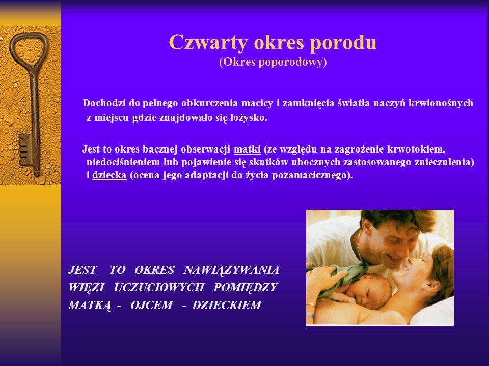 Czwarty okres porodu (Okres poporodowy)