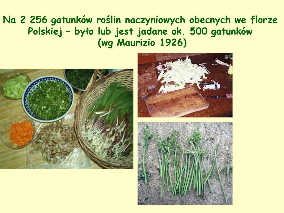 Na 2 256 gatunków roślin naczyniowych obecnych we florze