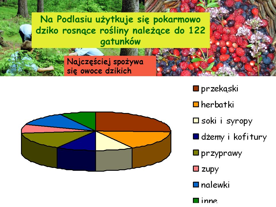 Na Podlasiu użytkuje się pokarmowo dziko rosnące rośliny należące do 122 gatunków